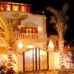 Eingangsbereich mit Palmen