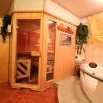 sauna_whirlpool_jacuzzi_wellness